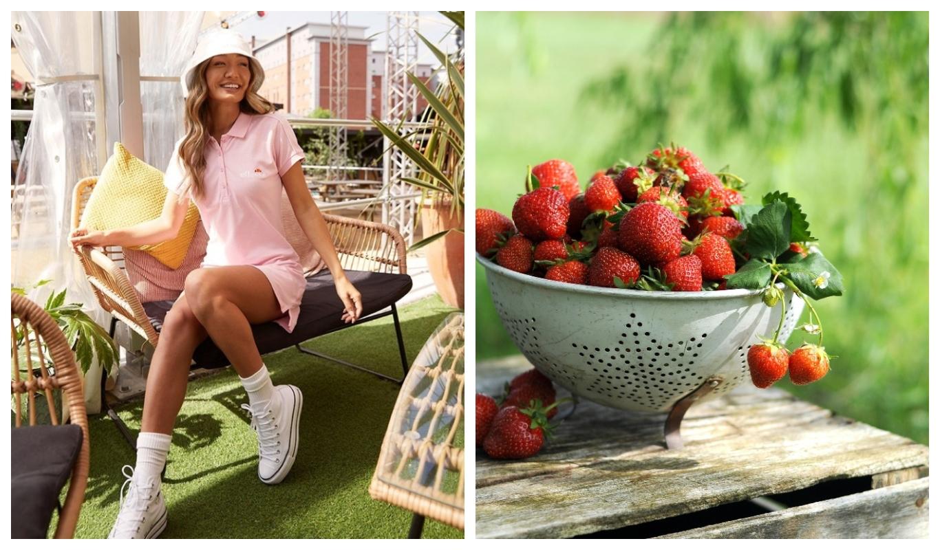 Mitä tehdä kesällä: poimi mansikoita